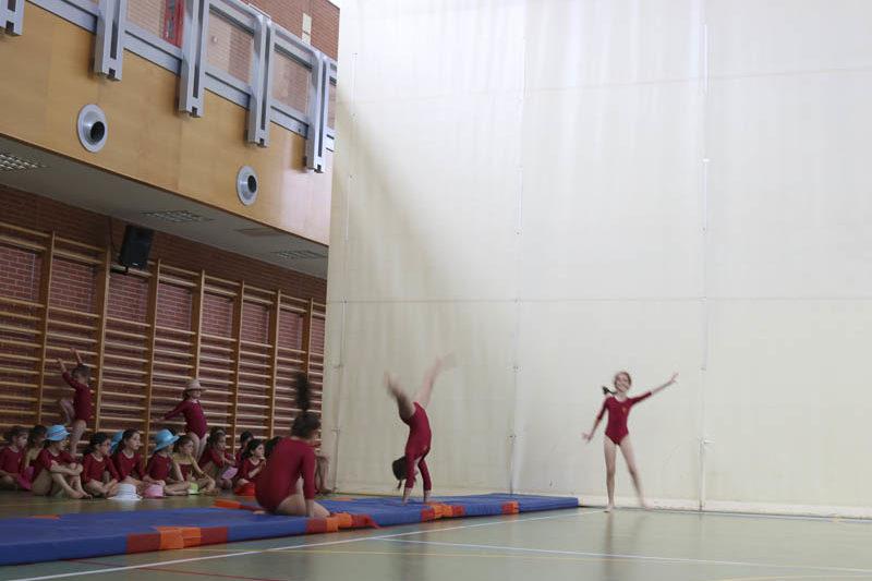 polideportivo 6