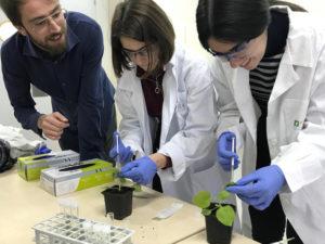 Laboratorio en UPM Montegancedo